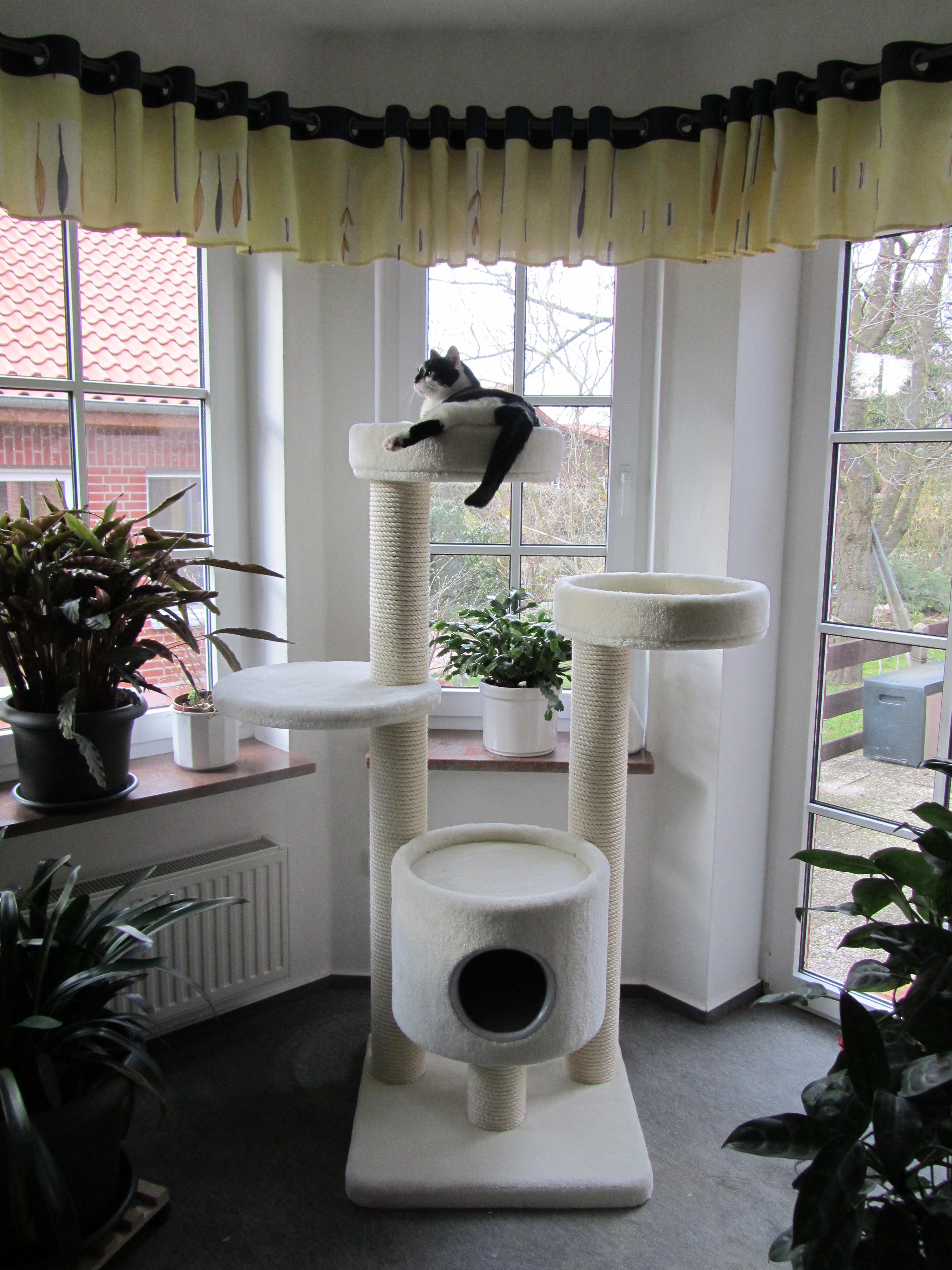 kirstins heimtier shop kratzbaum t11. Black Bedroom Furniture Sets. Home Design Ideas