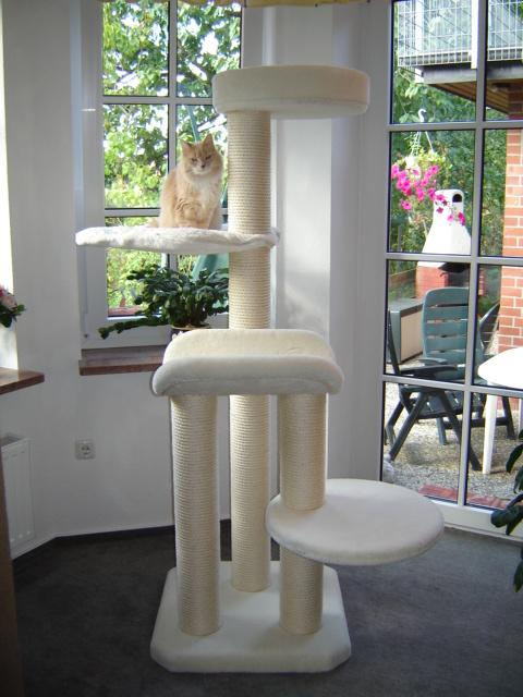 kirstins heimtier shop h ngemulde. Black Bedroom Furniture Sets. Home Design Ideas