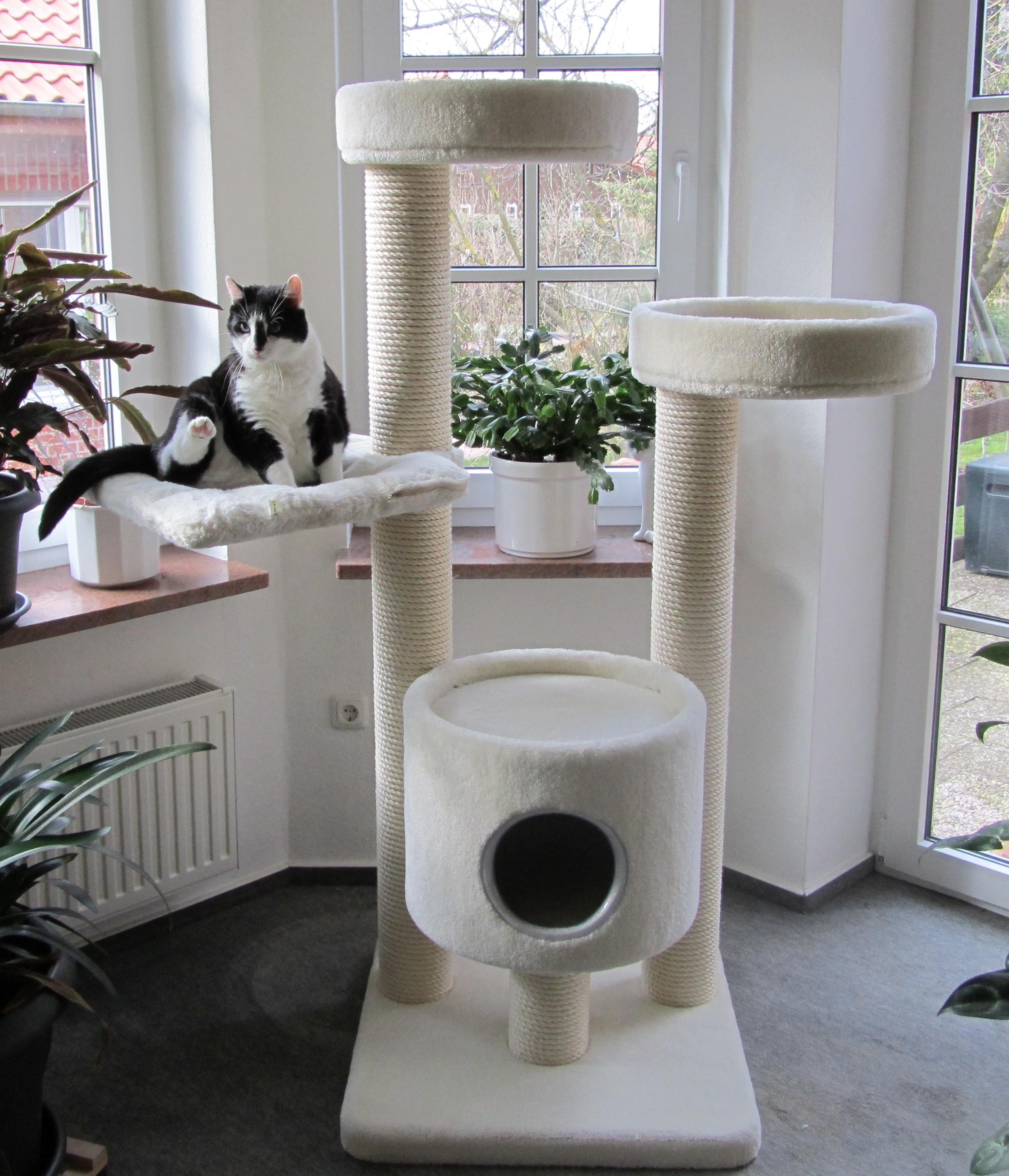 kirstins heimtier shop kratzbaum t11 hm. Black Bedroom Furniture Sets. Home Design Ideas